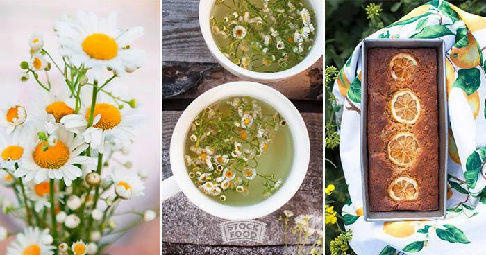 Happiness is cooking food blogger nika moskalenko stockfood blog inspired by her native ukrainian cuisine she has branched out experimenting with herbs and spices and developing her many famous desserts recipes forumfinder Choice Image